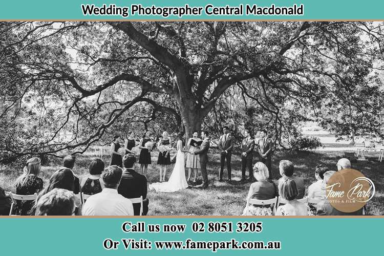 Wedding ceremony under the big tree photo Central Macdonald NSW 2775