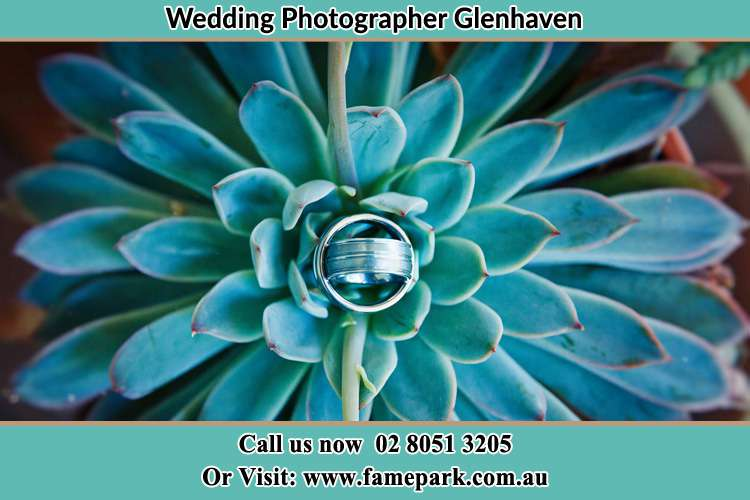 Wedding ring design at the top of the plant Glenhaven NSW 2156