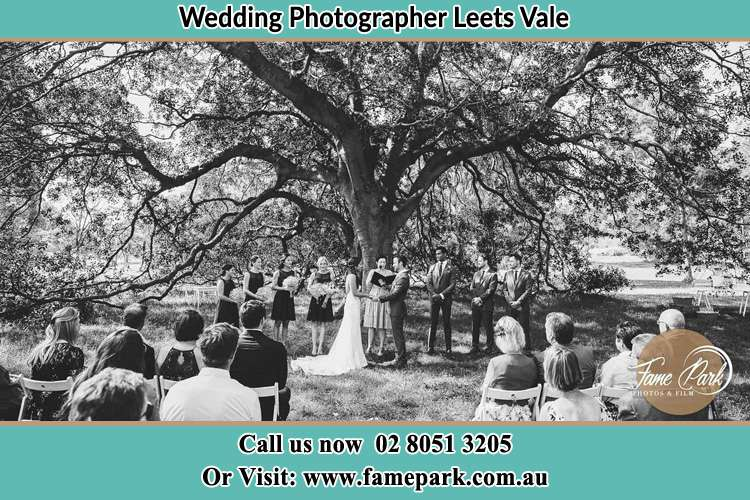 Wedding ceremony under the big tree photo Leets Vale NSW 2775
