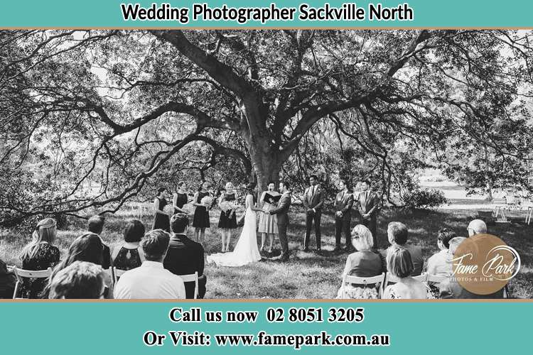 Wedding ceremony under the big tree photo Sackville North NSW 2756